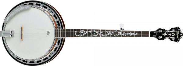 Ibanez B 200 Banjo