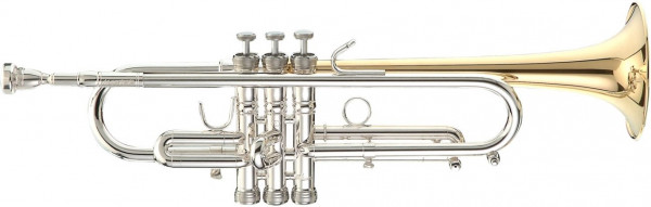 Stomvi Master 5381